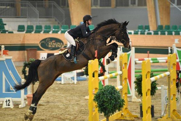 data/inhalt/events/2017/17080_CSN-B/horsesportsphoto_samstag_17080/MR2017_Feb03_SA_GallobMelissa_ Couleur Royal_Bw19_kl.jpg