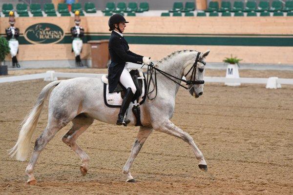 data/inhalt/events/2017/17081_CDN-A_Sichtung/horsesportsphoto_freitag_17081/MagnaRacino2017_Sichtung_FR_CoppardDornigJulia_SisleySantino_Bw07_kl.jpg