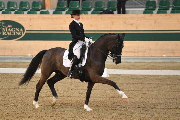 data/inhalt/events/2017/17081_CDN-A_Sichtung/horsesportsphoto_freitag_17081/MagnaRacino2017_Sichtung_FR_ValentaKaroline_ValentasDiego_Bw07_kl.jpg