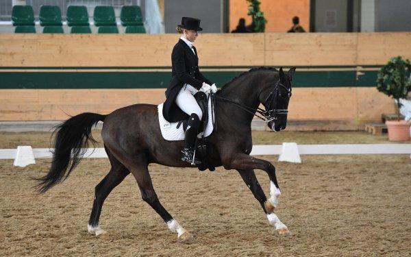 data/inhalt/events/2017/17081_CDN-A_Sichtung/horsesportsphoto_samstag_17081/MagnaRacino2017_Sichtung_SA_ValentaKaroline_ValentasDiego_Bw15_kl.jpg