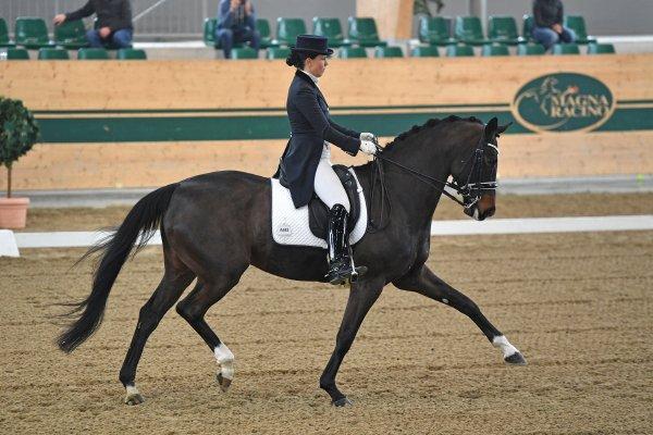 data/inhalt/events/2017/17081_CDN-A_Sichtung/horsesportsphoto_sonntag_17081/MagnaRacino2017_Sichtung_SO_TnoiuttiJacqueline_Sandrose_Bw20_kl.jpg