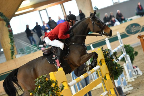 data/inhalt/events/2017/17082_CSN-B/horsesportsphoto_sonntag_17082/MR2017_Mrz01_SO_TothLaszlo_TollForgo_Bw27_kl.jpg