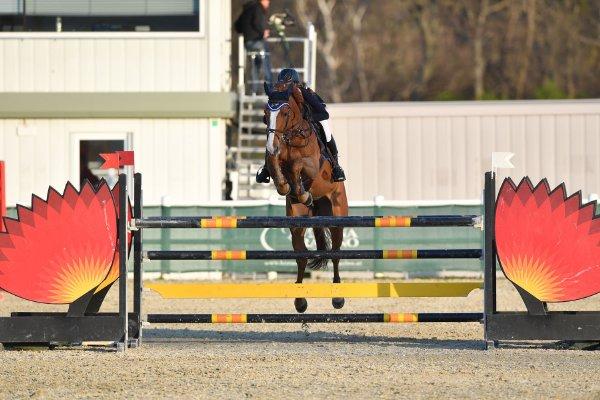 data/inhalt/events/2017/17083_CSN-B/horsesportsphoto_freitag_17083/MR2017_OutdoorOpening_HavlovicovaPetra_BackUp_Bw04_kl.jpg