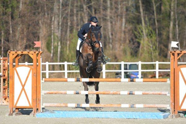 data/inhalt/events/2017/17083_CSN-B/horsesportsphoto_samstag_17083/MR2017_OutdoorOpening_VasakMartin_ConternoLife_Bw38_kl.jpg