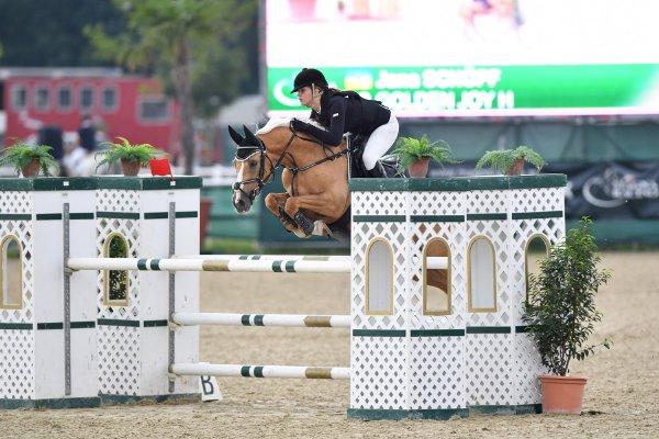 Pony SchopfJana GoldenJoyH Bw51 kl