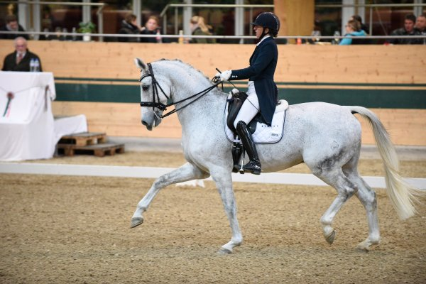 data/inhalt/events/2017/17090_CDN-A/horsesportsphoto_samstag_17090/MR2017_CDN-A_SA_Coppard-DornigJulia_kl.jpg