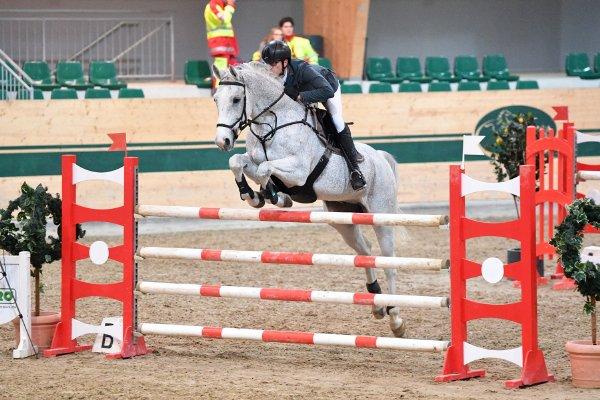 data/inhalt/events/2017/17091_CSN-B/horsesportsphoto_freitag_17091/_MR2017_Nov01_Freitag_FriesMichael_Careful64_kl.jpg