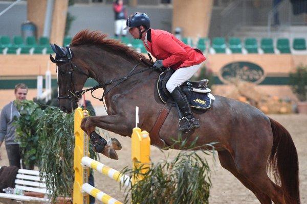 data/inhalt/events/2017/17091_CSN-B/horsesportsphoto_freitag_17091/_MR2017_Nov01_Freitag_FriesMichael_SchlemmerSiegfried_FlickFlack_kl.jpg