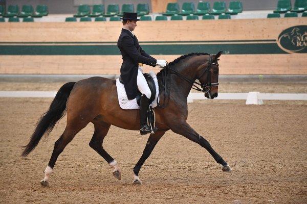 data/inhalt/events/2018/18188_CDN-A_Sichtung/horsesportsphoto_freitag_18188/MR2018_Sichtung_FR_InterII_Bacher Florian_kl.jpg