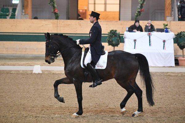 data/inhalt/events/2018/18188_CDN-A_Sichtung/horsesportsphoto_freitag_18188/MR2018_Sichtung_FR_InterII_Schumach Christian_kl.jpg