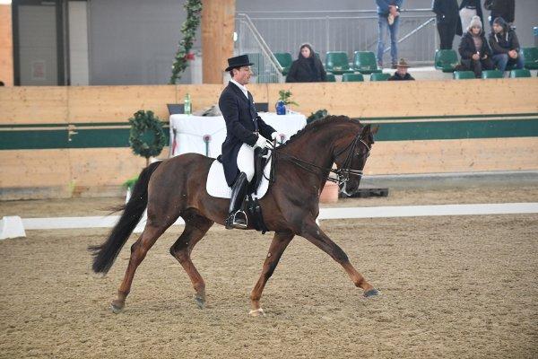 data/inhalt/events/2018/18188_CDN-A_Sichtung/horsesportsphoto_sonntag_18188/MR2018_Sichtung_SO_Himsl Wolfgang_kl.jpg