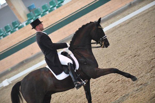 data/inhalt/events/2018/18188_CDN-A_Sichtung/horsesportsphoto_sonntag_18188/MR2018_Sichtung_SO_InterI_Lehfellner Stefan_kl.jpg