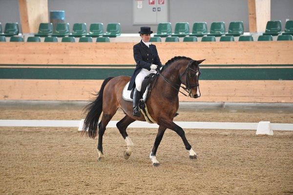 data/inhalt/events/2018/18188_CDN-A_Sichtung/horsesportsphoto_sonntag_18188/MR2018_Sichtung_SO_Michei Patricia02_kl.jpg