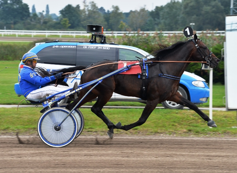 data/inhalt/fotos/Renntage_2014/2014_09_07_stronach_derby/2014_09_07_Breeders_Crown_ToscaVictory.jpg