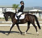 AbsengerKathrin VeniVidiVici2 Bew34 c horsesportsphoto.eu.JPG