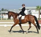 BinderLucia ZimtsternLB Bew36-2 c horsesportsphoto.eu.JPG
