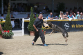 Dogshow1 Samstag TH
