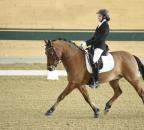 GoschCorina Chococino BW04 Pony CDNARacino chorsesportsphoto.eu.JPG