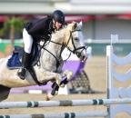 MR2018 Juni FR Pony SoyerNil Abbeygrey Poppy kl
