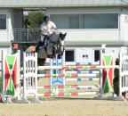 MiklosiStefan BillyManhattan Bew23-2 c horsesportsphoto.eu.JPG