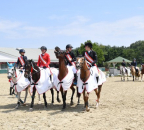 Pony 20170722-12341657-001 kl