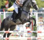 XMiklosiStefan DanielleB Bew19  c horsesportsphoto.eu.JPG